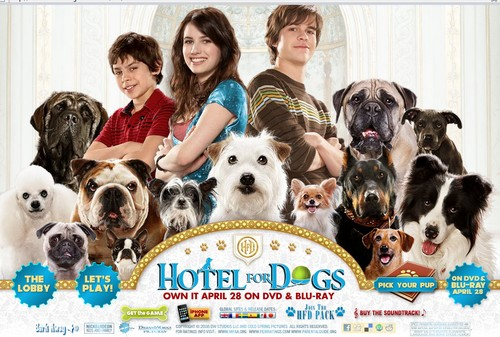 HOTEL FOR DOGS - 26 November 2011 - DOGSITE
